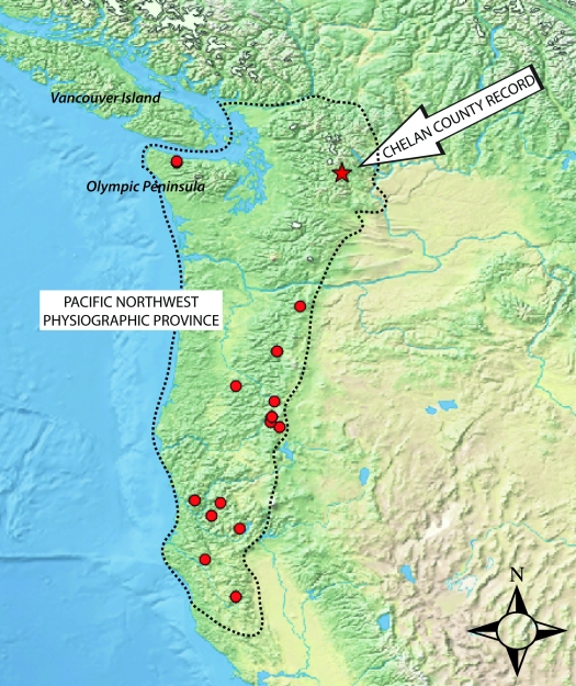 Locations of P. crypta (red symbols) within its geographic range (area within dotted line) in the PNW. The annotated specimen featured in this blog post (red star) will expand my understanding of how P. crypta has evolved!